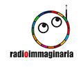 logo radio_GOAL ONU_contorno_page-0002